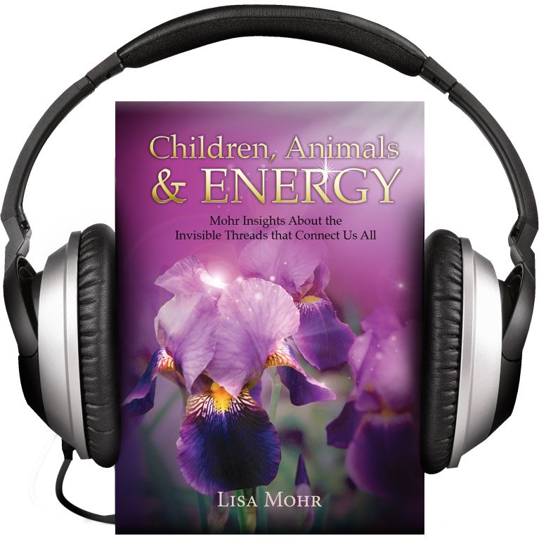 Children, Animals & Energy (Audiobook)